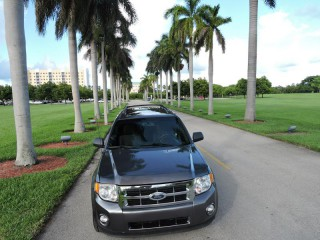 Image for 2010 Ford Escape XLT ID: 115147